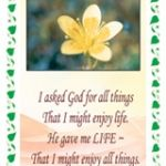 Pack of 10 Pocket Cards - I asked God for all things (PKTPP01)