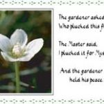 Photo - The Gardener and the Master (PL01)